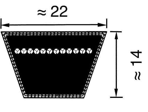 Optibelt C/22 v-snaar